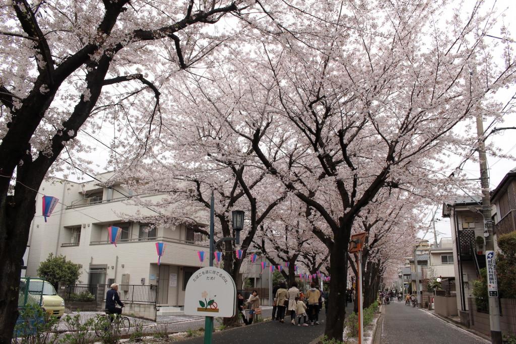 花と緑の散歩道