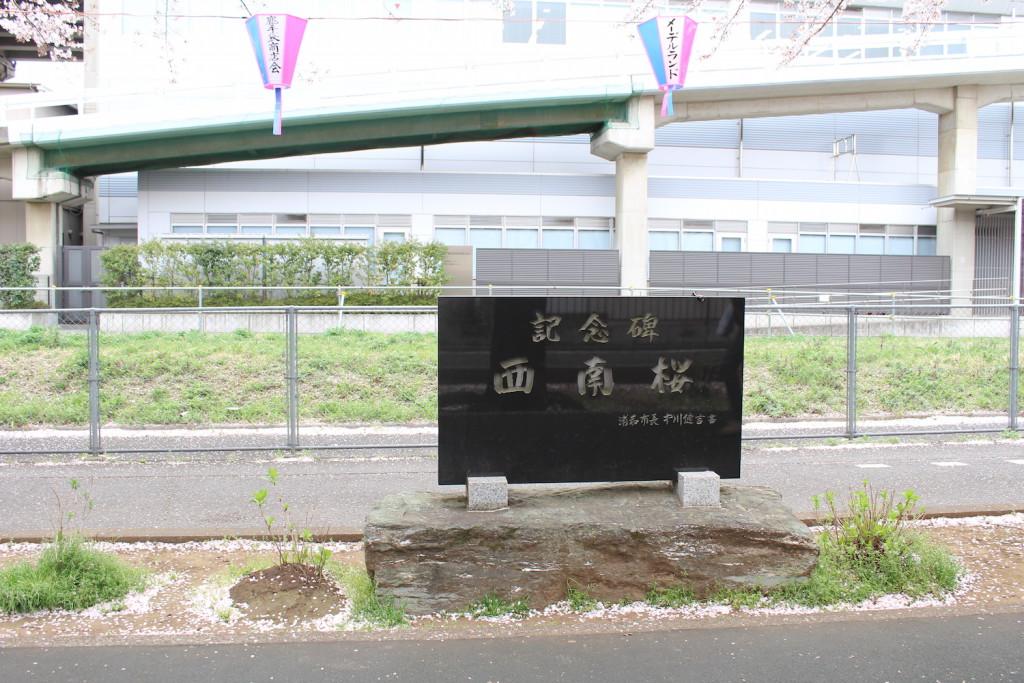 西南桜記念碑