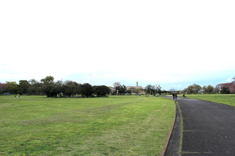 さくら草公園