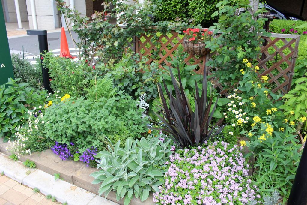 プラウドタワー武蔵浦和ガーデンの花壇