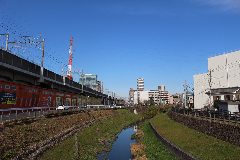 冬の笹目川