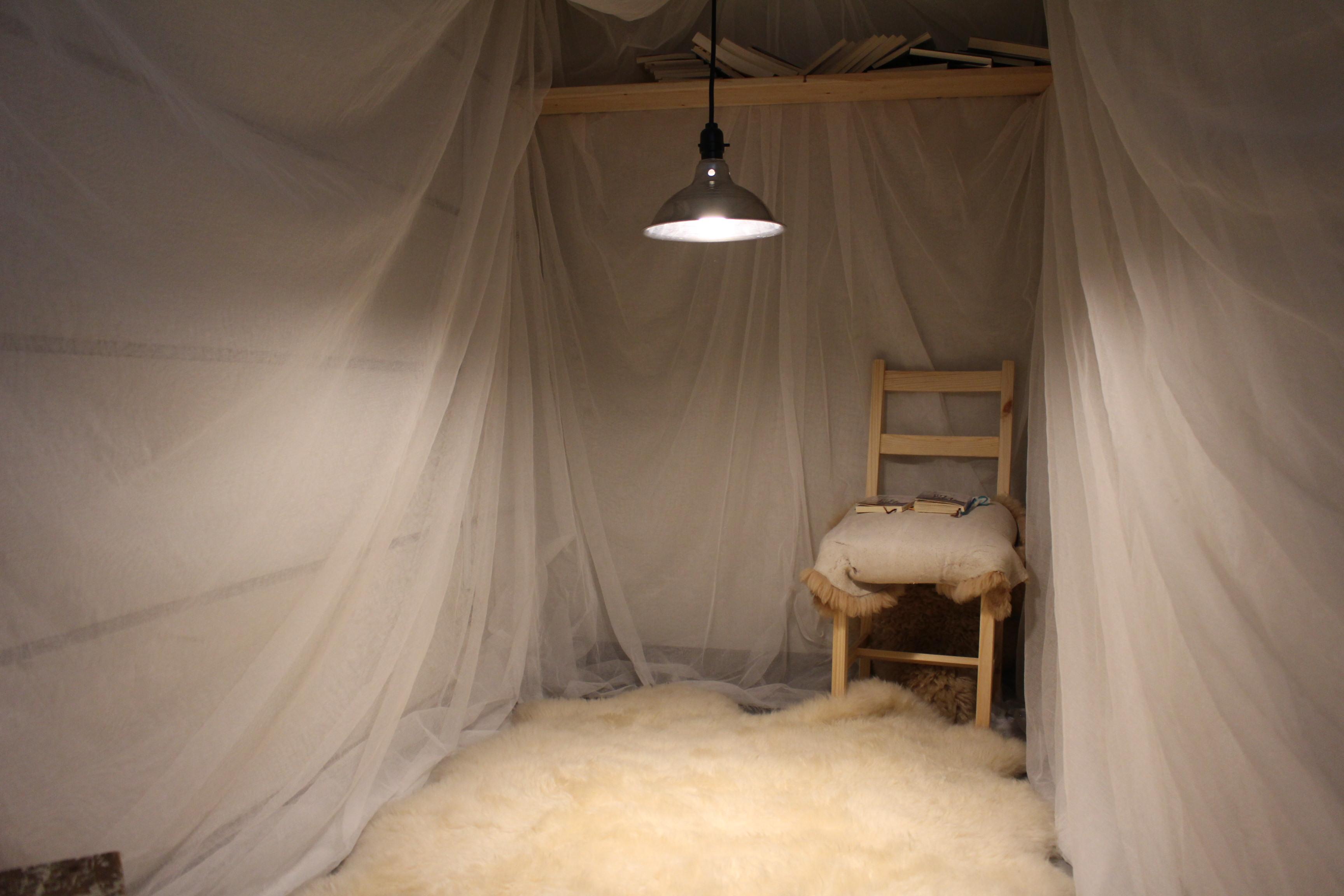 白熊の部屋