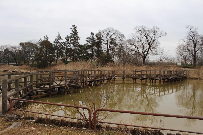 鑑賞池の橋