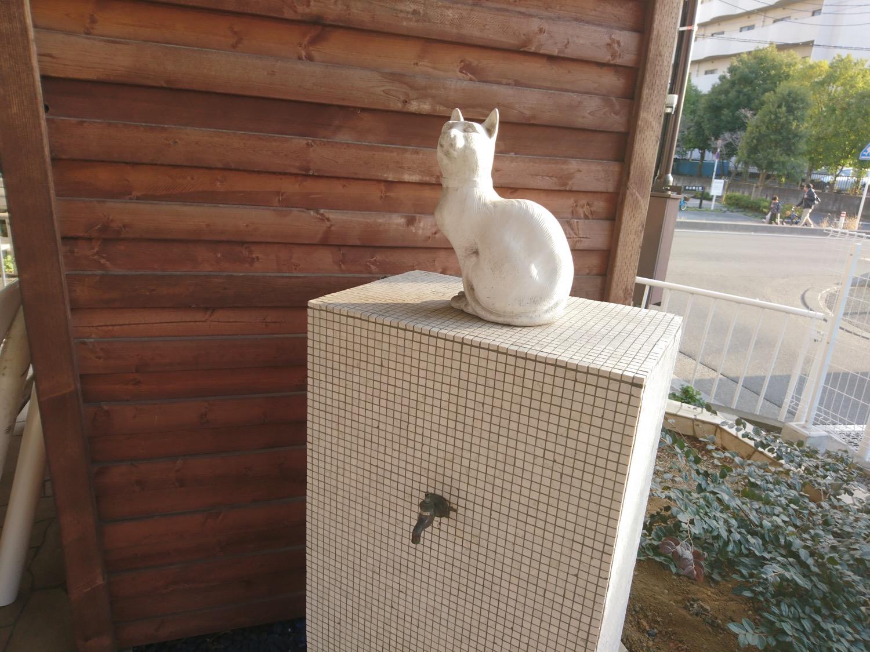 猫の水道?